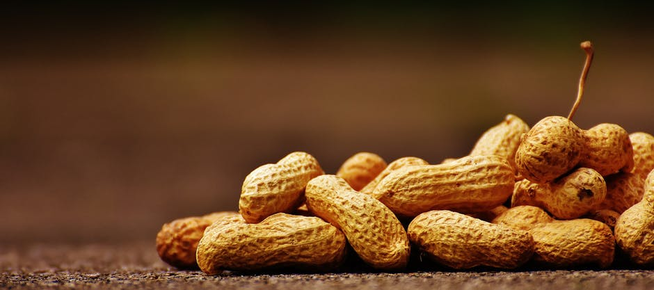 Peanuts in their shells